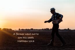 Seeds of Goodness